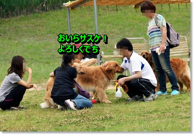 DSC_4501_20130613204933.jpg