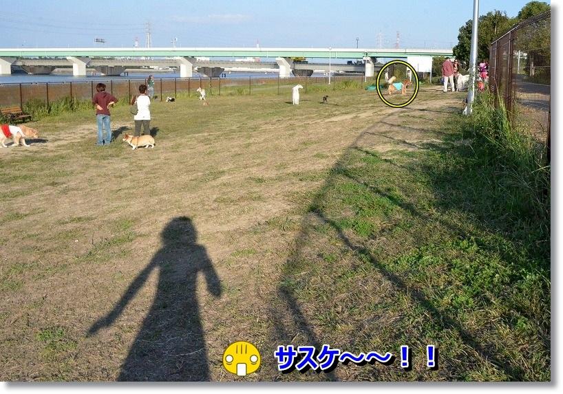 DSC_4973.jpg