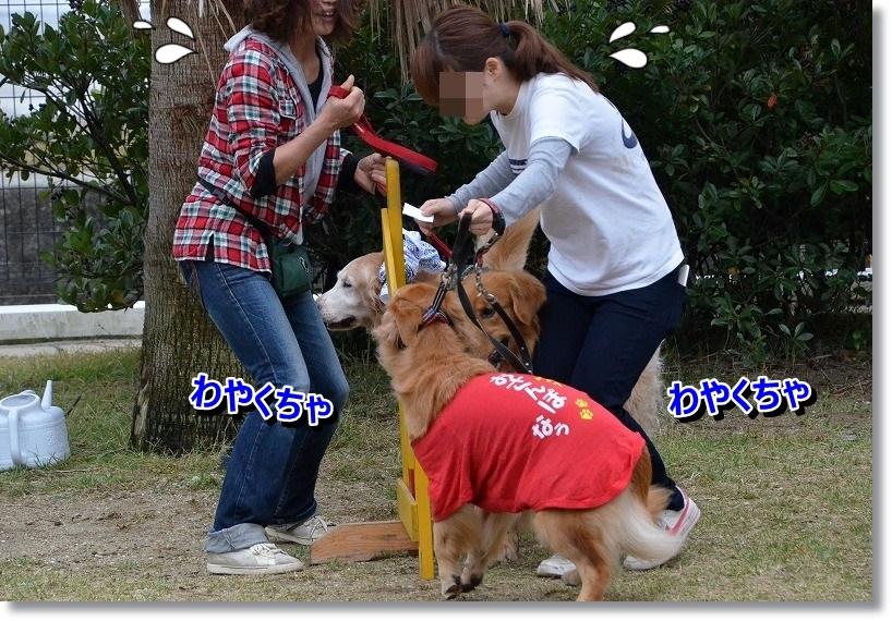 DSC_5168.jpg