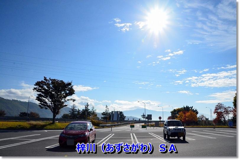 DSC_5861_2014111119134182c.jpg