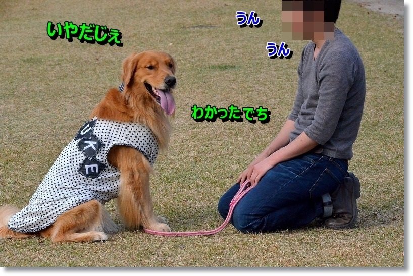 DSC_6209_20141118012317154.jpg