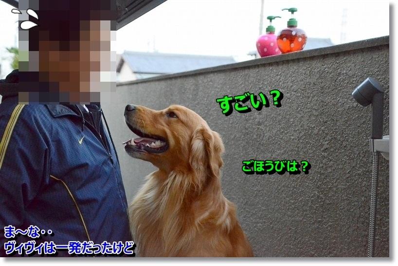 DSC_6548.jpg