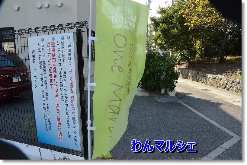 DSC_6921.jpg
