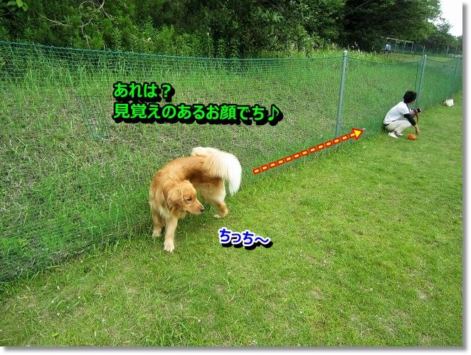 IMG_5374.jpg