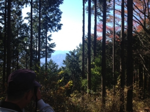 陣馬山_登り初めの風景