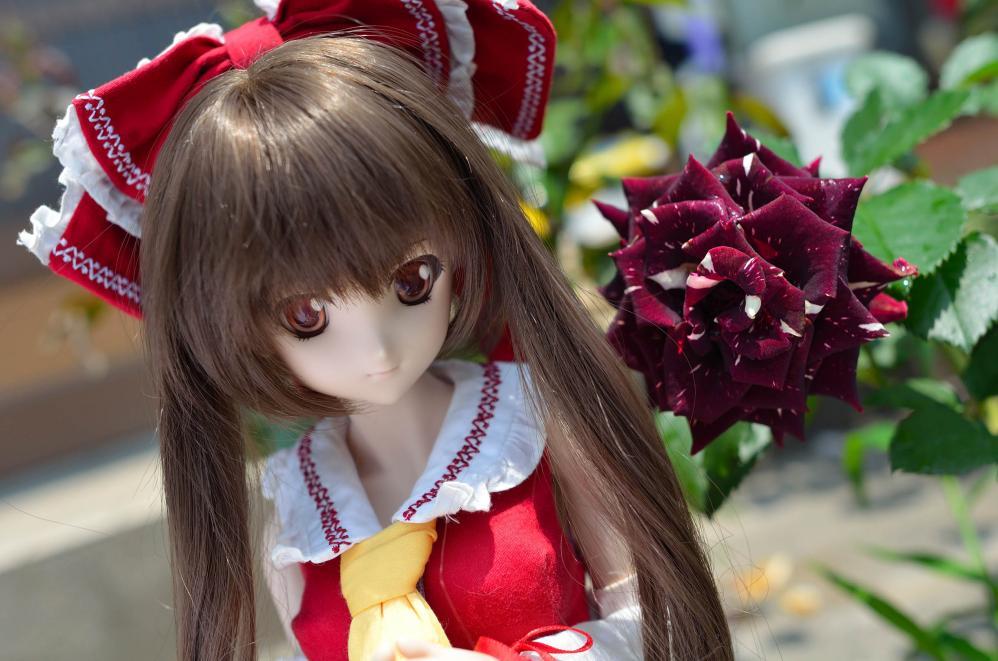 DSC_0244aa_20130610005818.jpg