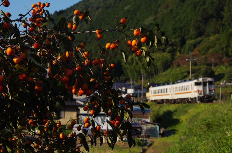 2014年10月19~21日 高山 117
