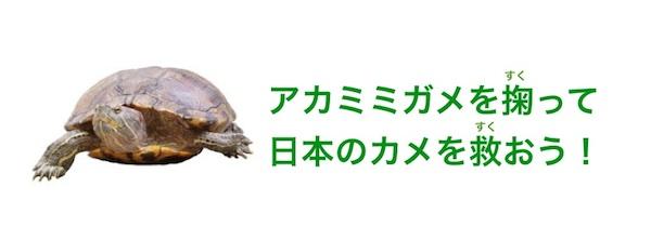 アカミミガメ捕獲イベントバナー2