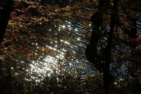 大滝山公園DSC04824