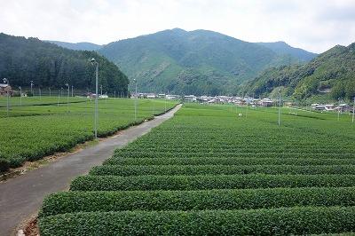 大井川鉄道08