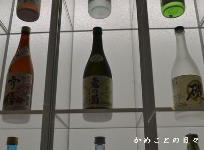 DSC_0403-kame.jpg