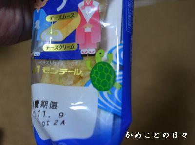DSC_0710-kame.jpg