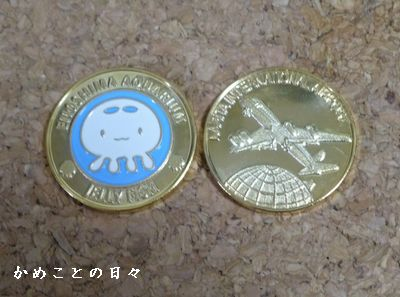 P1070674-coin.jpg
