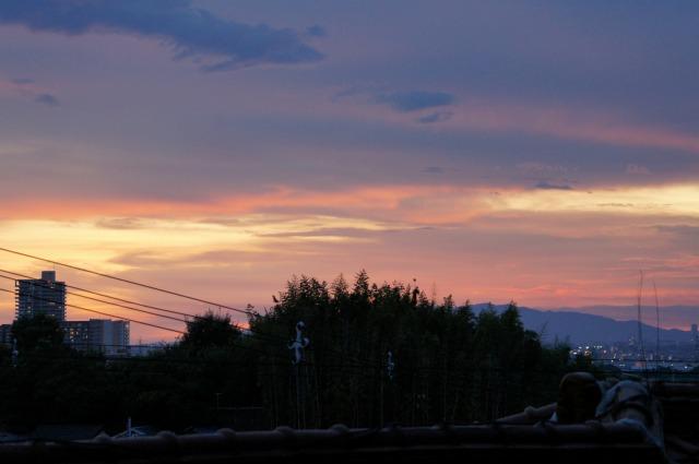 神社から見た夕陽