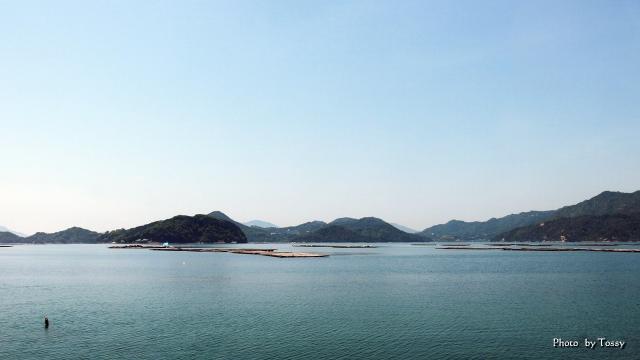 瀬戸内海のカキ養殖のイカダ
