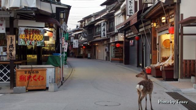 土産物屋の通り