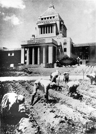 議事堂 畑