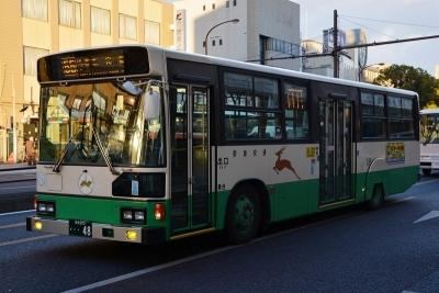 DSC_0477-m.jpg