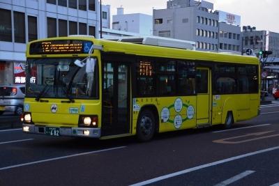 DSC_0492-m.jpg