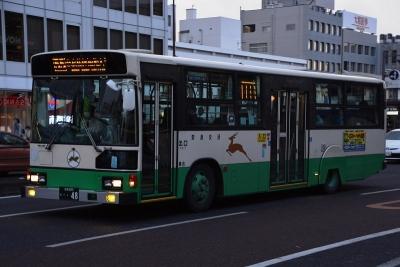 DSC_0493-m.jpg