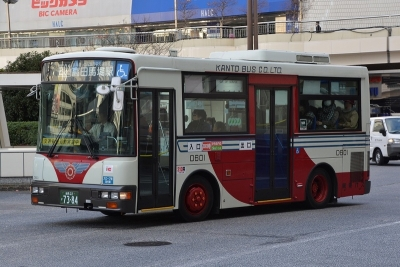 DSC_0607-m.jpg