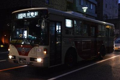 DSC_0650-m.jpg