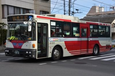 DSC_0965-m.jpg