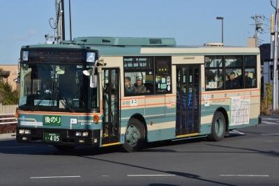 DSC_1364-m.jpg