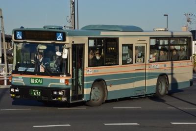 DSC_1374-m.jpg