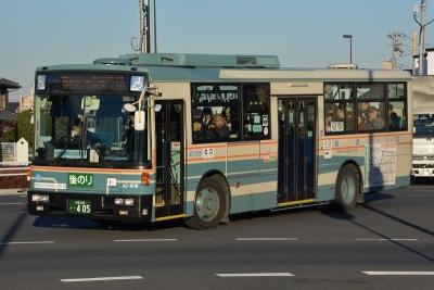 DSC_1375-m.jpg