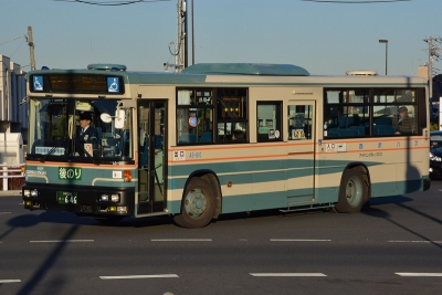 DSC_1376.jpg