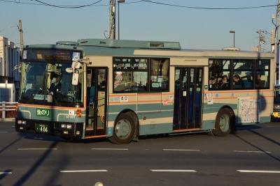 DSC_1377-m.jpg