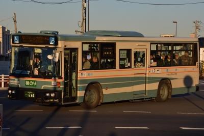 DSC_1381-m.jpg