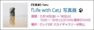 lifewithCat_banner.jpg