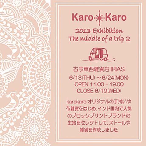 IRIAS exhibition2013a