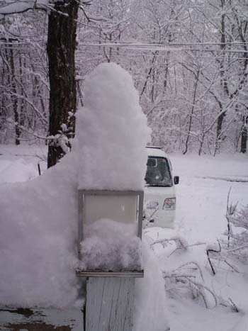 H25.4.25降雪35センチアップ