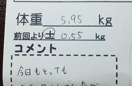 DSCF7502.jpg