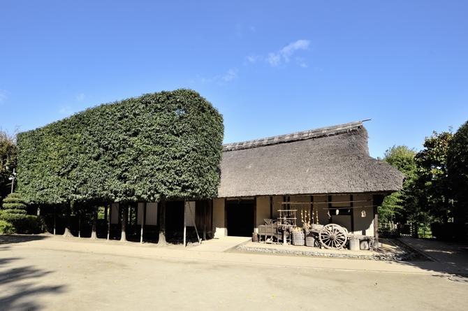 抜けるような青空に旧神山家住宅主屋の茅葺の屋根が綺麗に見えます。