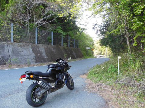 DSCN0626_656仙坂峠