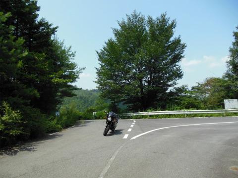 DSCN1270_689大野峠(無反峠)