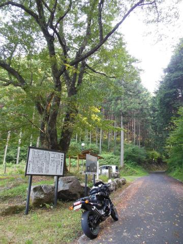 DSCN1311_697-1袋坂峠