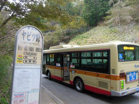 DSCN1674.jpg