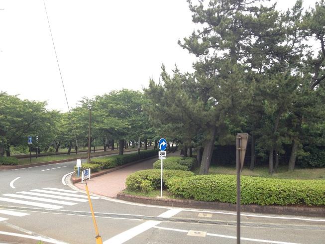 uminonakamichi06