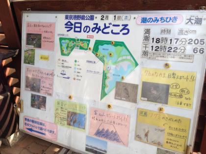 20140201heiwajima_1_convert_20140201223833.jpg