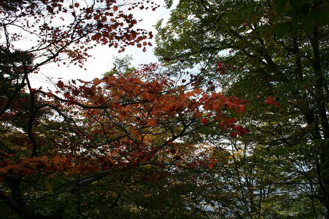 okuchichibu2013100069.jpg
