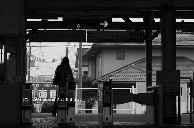 2013年 南海電車 浜寺公園駅3