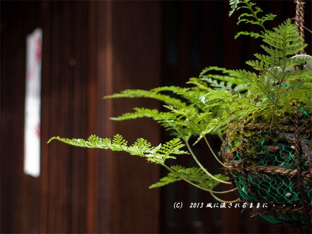ペンタックス MX-1で撮る 京都・花見小路 釣りしのぶ