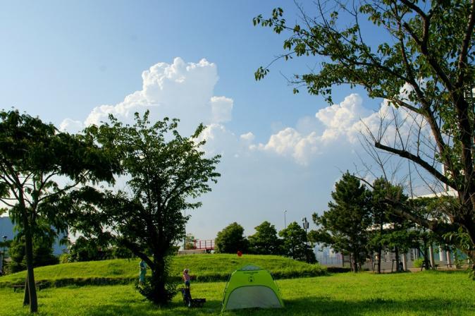 DSC02607夏景色