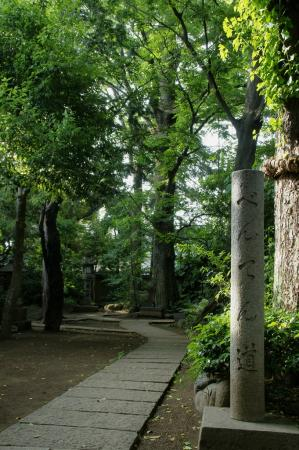 DSC02419奥沢神社2