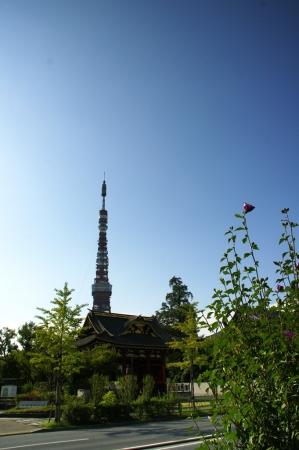 DSC04447東京タワー周遊